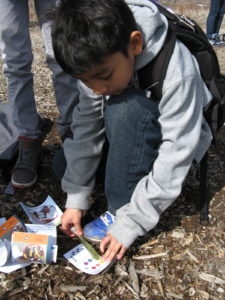 5th grader at Fletcher Intermediate Science and Technology School, Aurora CO., checks pH. Photo: Earth Force