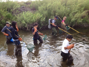 Students and biologists conduct electro-shock fish sampling as part of a replication of a water quality study on Westerly Creek in Denver and Aurora, CO. Photo: Earth Force