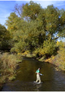 A probe is used to test water quality. Photo: GW Denver