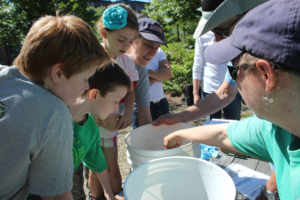 Volunteers identify fish collected in the urban Woonasquatucket. River. Photo: WRWC