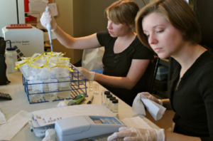 CRK interns analyze samples using the IDEXX® Colilert® system. Photo: CRK