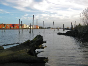 The Duwamish River