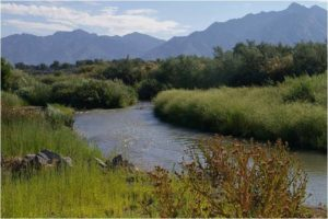 Jordan River, Salt Lake County, Utah. Photo: Jordan River Commission.